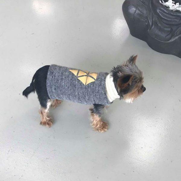 Nähanleitung Tutorial Hunde Pullover Hundepulli erbsünde nähen
